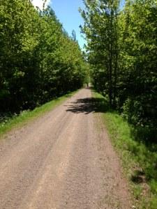 1 Trail (8)