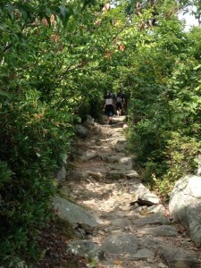 Mary's Rock Trail