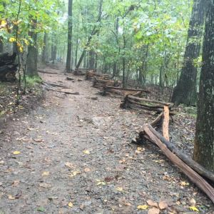 Trail to Kennesaw Mountain