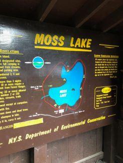 Moss trail around the lake